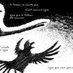 Pour faire le portrait d'un oiseau 8