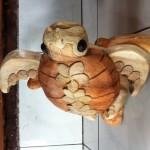 Noémie, la tortue