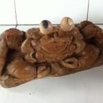 Vomeer, l'araignée de mer