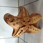 Théo, l'étoile de mer