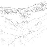Dialogue avec les esprits de la nature volume 3 - Steeve Di Marco